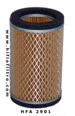 Oro filtras Hiflo HFA2901